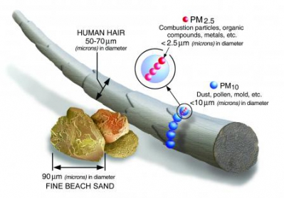 Common Airborne Particulates